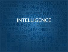 Corporate Intelligence and Private Investigation